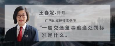一般交通肇事逃逸處罰標準是什么-王春妮律師