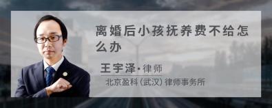 离婚后小孩抚养费不给怎么办-王宇泽律师