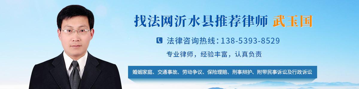 沂水县武玉国律师