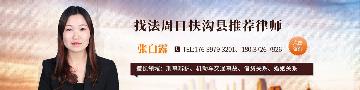 扶沟县张白露律师