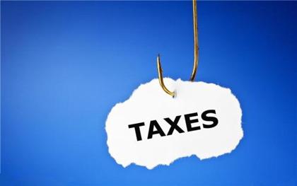 一般纳税人辅导期是什么