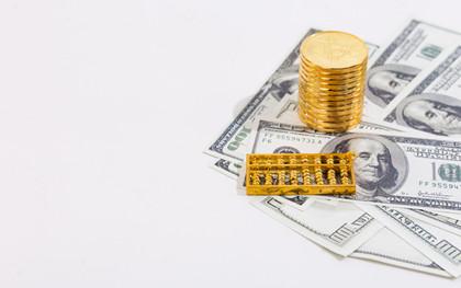 有限责任公司的债务承担规定