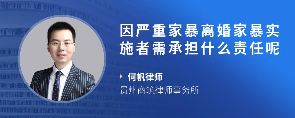 因严重广东11选5暴离婚广东11选5暴实施者需承担什么责任呢