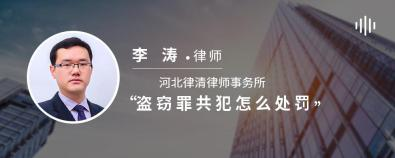 盜竊罪共犯怎么處罰-李濤律師