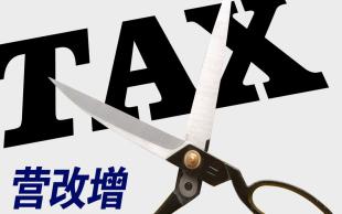 企业纳税额