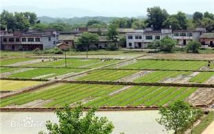 农村建设用地