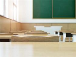 小学生在学校被社会人士勒索学校需要担责吗