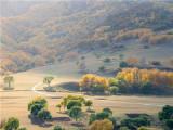 农村土地承包经营权证找哪个部门