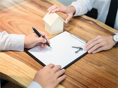 要求履行保险合同属于什么案件