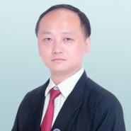 陈金律师团队