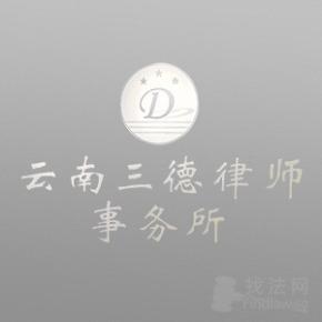 云南三德律所律师