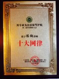 中国网律大会十大律师