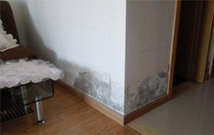 房屋質量問題
