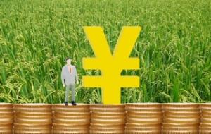无息贷款流程