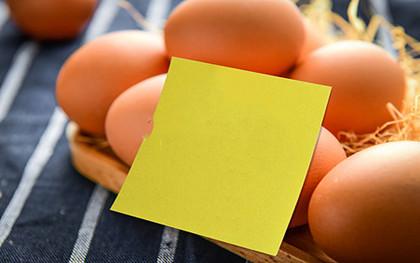 最新食品安全法的调整范围有哪些