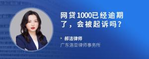 网贷1000已经逾期了,会被起诉吗?