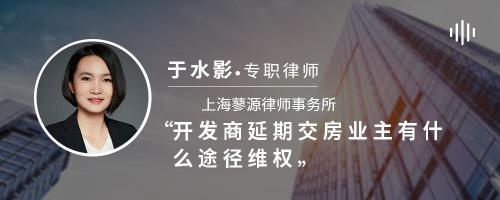 开发商延期交房业主有什么途径维权