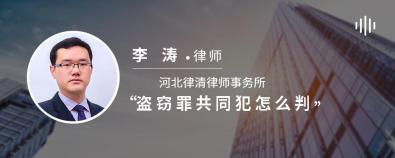 盗窃罪共同犯怎么判-李涛律师